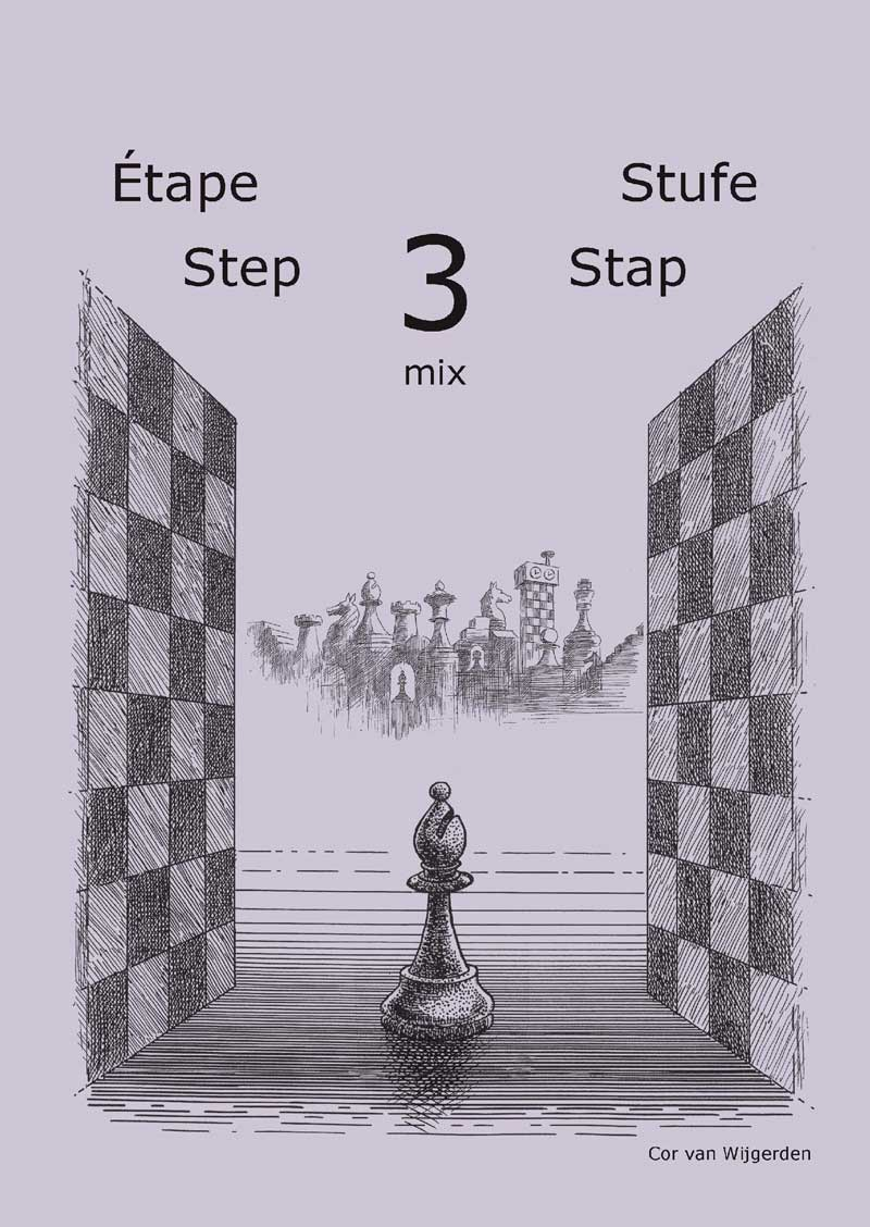 workbookstep3mix.jpg